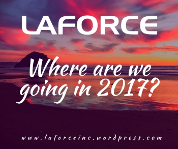 Where are we Going in 2017?